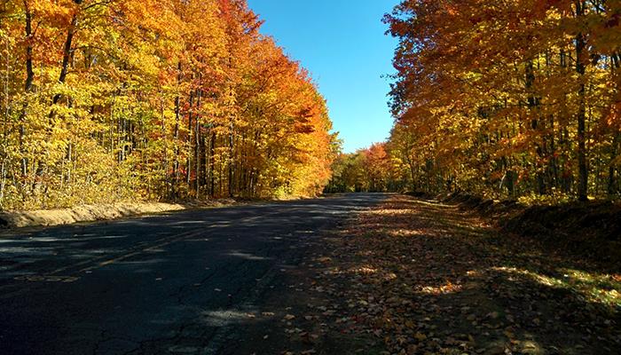Stanton_Township_colors